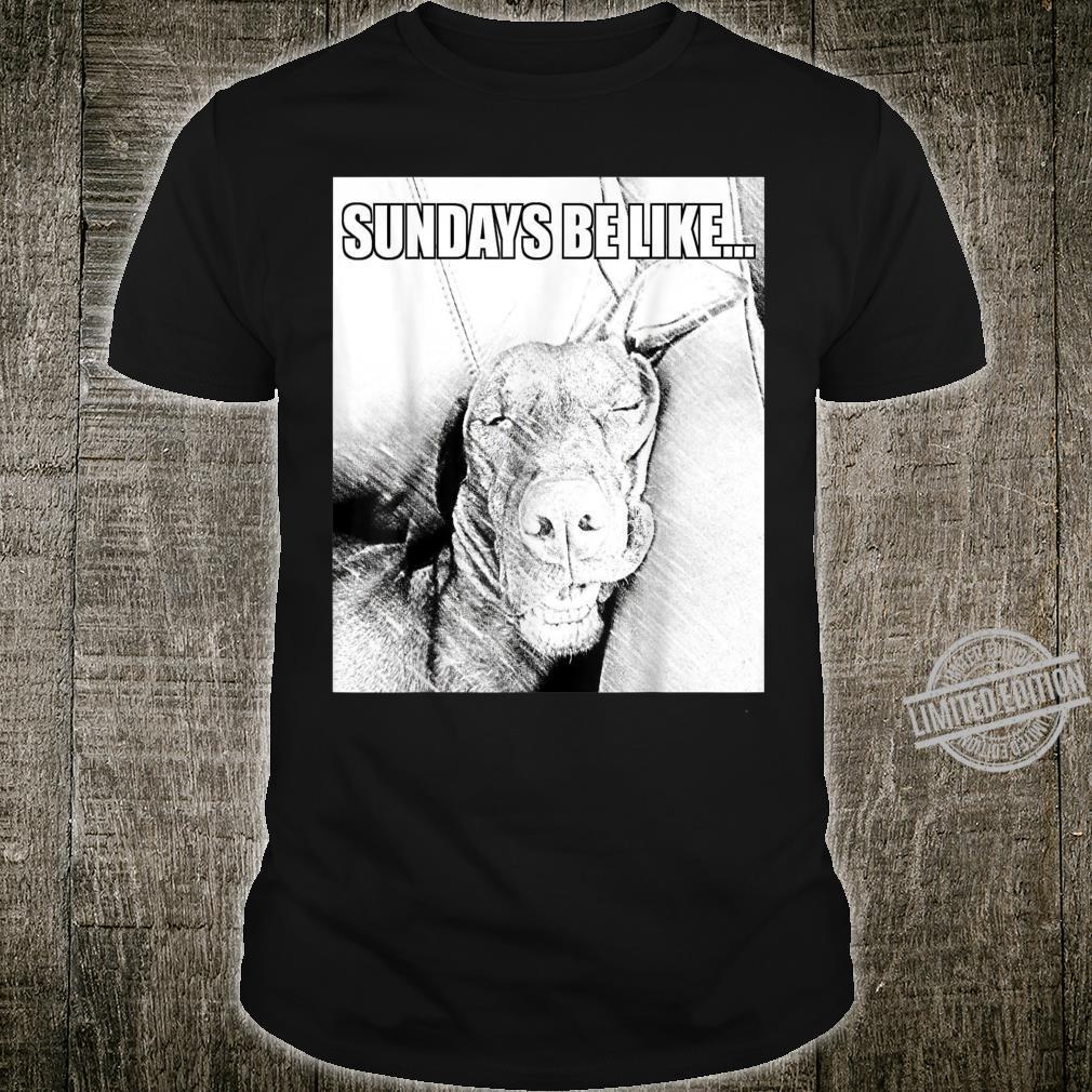 Vizsla Sundays Be Like Top Dog Shirt